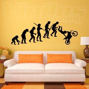 Evolution 04