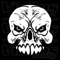 Skull 08