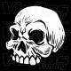 Crâne 09